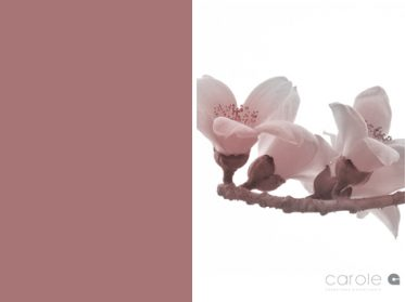 Carole G