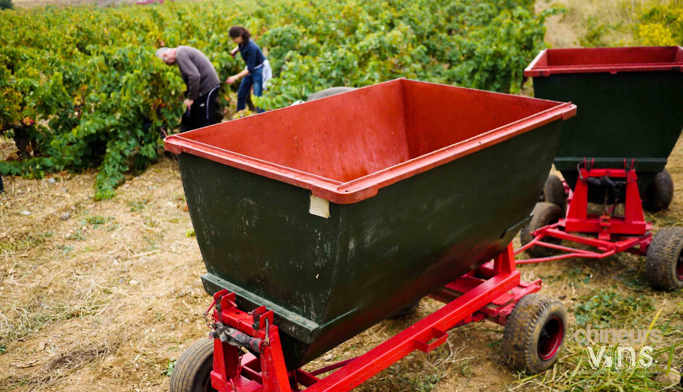 les-chineurs-de-vins-fabre