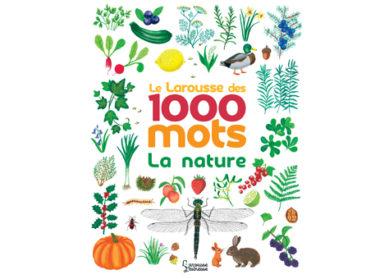 1000 mots illustrés…