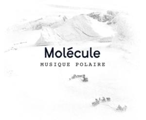 molecule sila musique
