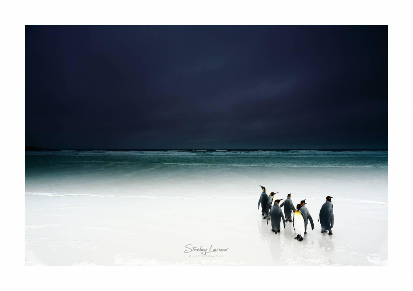 stanley leroux photographe