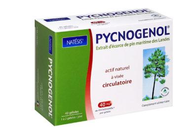 Pycnogenol® : extrait de pin maritime des Landes