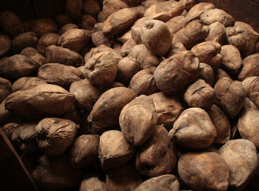 L'huile vierge de noix de coco de Sao Tomé