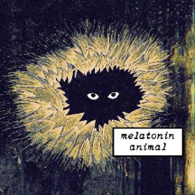 L'Exclu de la rentrée 19|20 : Melatonin
