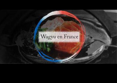Wagyu : le bœuf japonais