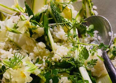 Riz aux asperges – Bruno Verjus, Table*