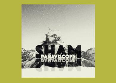 Panaviscope