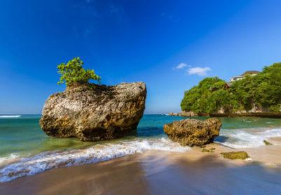 De la plage ensoleillée…