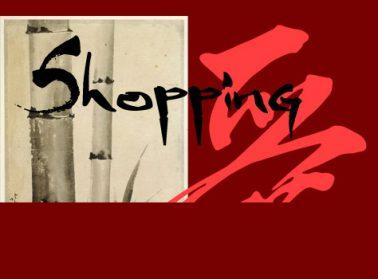 Shopping Nouvel An Asiatique